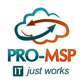pro-msp-logo